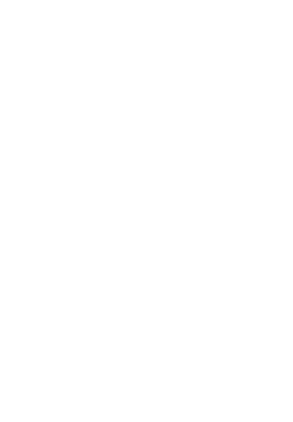 9th Annual Blue Sky Sponsors